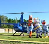 Voo de Helicóptero